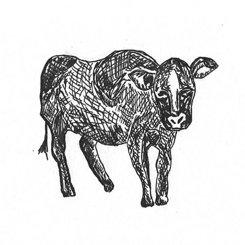 icon-beef